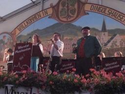 Weinfest Dingolshausen 2008